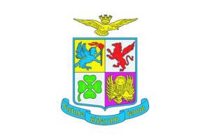 Bandiera arma aeronautica_stemma