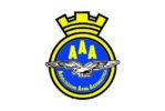 Bandiera Associazione arma aeronautica