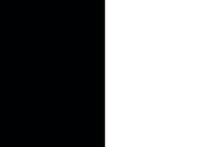 Bandiera bianco nera