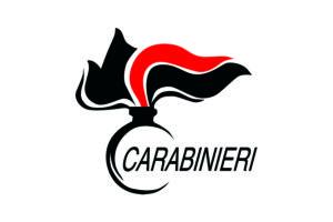 Bandiera Carabinieri_2