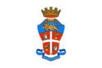 Bandiera carabinieri_stemma araldico