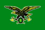 Bandiera corpo forestale
