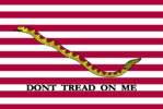 Bandiera marina-militare-usa